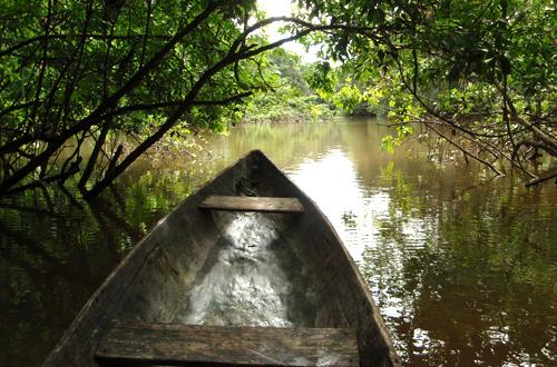 auf dem weg zum dschungeltrekking amazonas